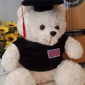 Gấu bông tốt nghiệp